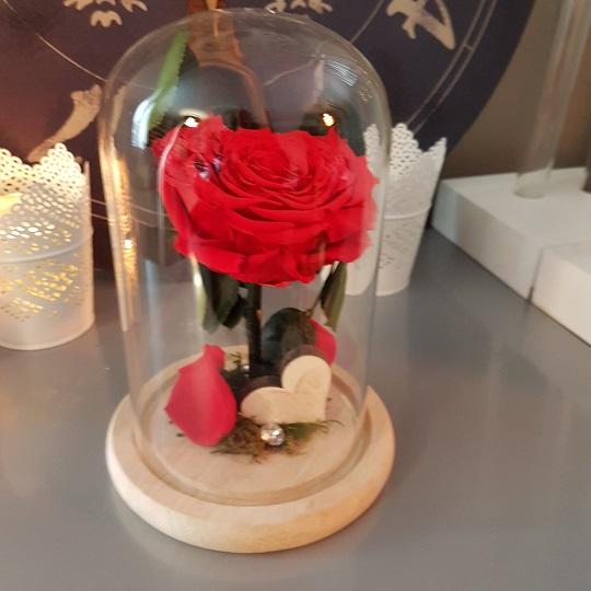 Livraisons De Fleurs Nancy Vente En Ligne Bouquets De Fleurs Et Compos