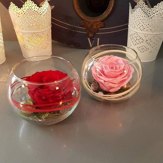 Roses Stabilisees Eternelles Livraison Fleurs Nancy Vandoeuvre